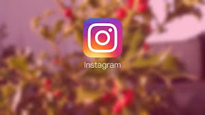 Why Should You Buy Instagram Followers?